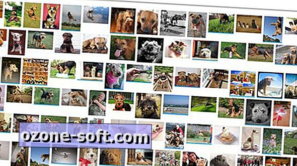 Επτά εναλλακτικές μηχανές αναζήτησης Flickr