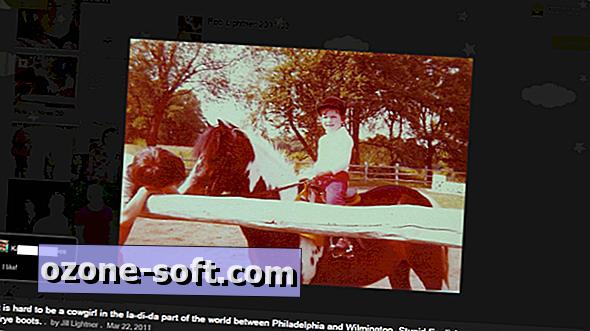 Organizuokite ir peržiūrėkite internetines nuotraukas vienoje vietoje su Pictarine