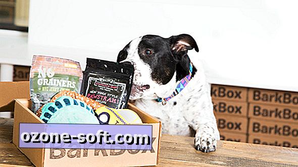 5 tellimiskasti kingitust teie koerale (või koeraomanikele)