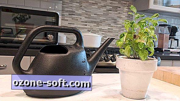 Jak uprawiać warzywa bez podwórka